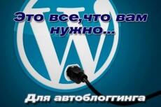 Сделаю видеосайт на вордпресс, автонаполняемый роликами Youtube 10 - kwork.ru