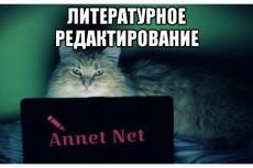 Качественное редактирование текста 15 - kwork.ru