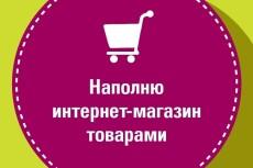 Заполню 5 товаров для интернет-магазина 19 - kwork.ru
