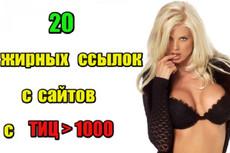 20 неприлично жирных ссылок. Общий ТИЦ трастов 150.000+ 17 - kwork.ru