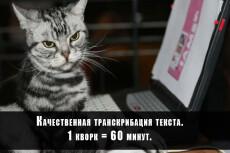 Переведу аудио/видео в текст (транскрибация) 21 - kwork.ru