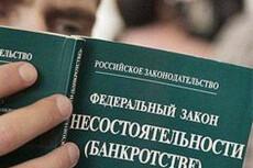 Сделаю заключение о признаках преднамеренного и фиктивного банкротства 13 - kwork.ru