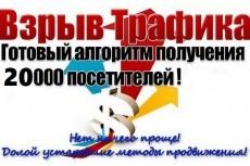 Привлеку 55 уникальных рефералов в ваш проект 13 - kwork.ru