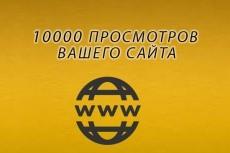 8000 тысяч просмотров для вашего сайта + 2000 тысячи в подарок 22 - kwork.ru