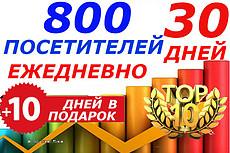 Трафик на сайт. 130-150 посещений ежедневно на 70 дней. Бонус 21 - kwork.ru