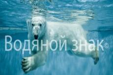 Удаление фона 50 фото 5 - kwork.ru