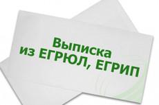 Срочная выписка из егрюл, егрип с ЭЦП 11 - kwork.ru