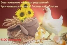 Adobe Muse - 308 виджетов, инструментов и шаблонов 8 - kwork.ru