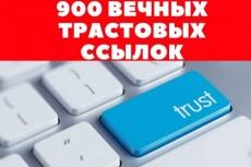 Вручную 220 Социальных Сигналов на Ваш сайт 7 - kwork.ru