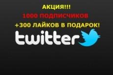 Настройка Яндекс.Директ, РСЯ. Лидогенерация с оплатой за лида 11 - kwork.ru