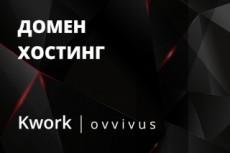 Помогу подобрать домен, хостинг для вашего сайта 14 - kwork.ru
