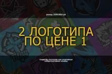 Два варианта логотипа 14 - kwork.ru