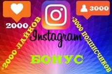 3000 Качественных Подписчиков Instagram плюс Лайки 11 - kwork.ru