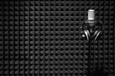 Озвучу видеообзор, видеоролик, аудио книгу, текст - женский голос 22 - kwork.ru