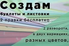 Сделаю красивый дизайн буклета, брошюры 106 - kwork.ru