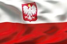 Переведу текст с польского на русский 18 - kwork.ru