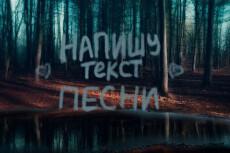 Напишу текст на русском языке для песен на английском, с похожим смыслом 5 - kwork.ru