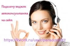 Подключу виджет автоконсультанта, чат для сайта 8 - kwork.ru