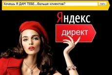 Настрою рекламную кампанию Яндекс Директ 8 - kwork.ru