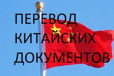 Качественный перевод с китайского и на китайский 12 - kwork.ru