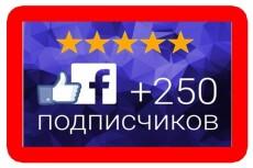 Раскрутка Facebook - 600 вечных русскоговорящих подписчиков 13 - kwork.ru