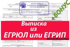 Проверка контрагента 10 организаций + Бонус 3 - kwork.ru