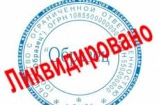 Подготовлю документы для регистрации ООО с одним учредителем 7 - kwork.ru