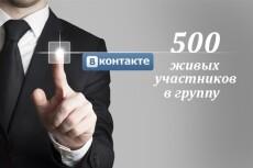 500 живых участников в группу ВК, ВКонтакте, без ботов и программ 12 - kwork.ru