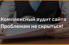 Проведу комплексный Аудит Вашего сайта до 100 факторов ранжирования 20 - kwork.ru