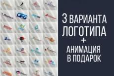 Красивый и цепляющий логотип для Вашего бизнеса 10 - kwork.ru