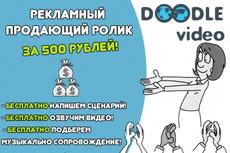 Сделаю рекламный ролик в стиле скрайбинг, дудл-видео 7 - kwork.ru