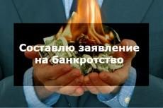 Составление заявления на банкротство физ. лица 17 - kwork.ru