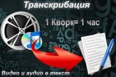 Грамотная печать текста, перевод из аудио и видео 18 - kwork.ru