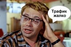 3050 посетителей на ваш сайт плюс 25 рекламных постов в группах ВК 12 - kwork.ru