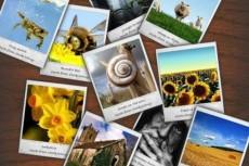Сделаю обработку 10 фотографий,уменьшу размер фото 6 - kwork.ru