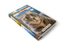 Живая крутящаяся 3D обложка на коробку, книгу или DVD на выбор 6 - kwork.ru