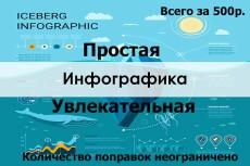 Инфографика 12 - kwork.ru