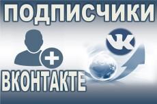 300 подписчиков на паблик Вконтакте, без ботов и программ 6 - kwork.ru