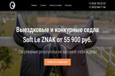Создам красивую страничку входа для сайта на Wordpress 11 - kwork.ru