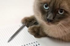 Напишу уникальные и качественные тексты на медицинскую тематику 3 - kwork.ru