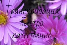Качественная транскрибация, перевод из аудио в текст, из видео в текст 21 - kwork.ru