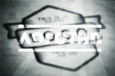Стильный логотип 3 варианта + исходники 26 - kwork.ru