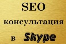 Проведу SEO-консультацию в текстовом режиме (Skype) 15 - kwork.ru
