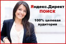 Яндекс Директ под ключ для вашего бизнеса, лендинга 6 - kwork.ru