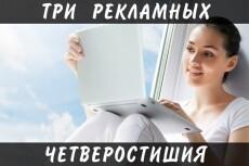 Броские, рекламные описания для Вашего товара 15 - kwork.ru