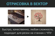 Векторная графика, Перевод растрового фото изображения в векторное 108 - kwork.ru