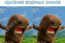 Удалить водяные знаки (watermark) с фото 7 - kwork.ru