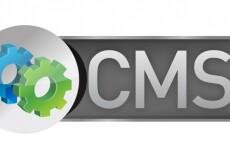Установка CMS WordPress на хостинге 8 - kwork.ru