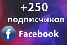 Добавлю 500 активных русскоязычных подписчиков на паблик в Facebook 3 - kwork.ru
