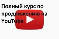 Консультации по работе с youtube 22 - kwork.ru